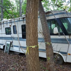 1987 Mallard for Sale in Medford, NY