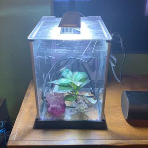 Fish tank for Sale in Pflugerville, TX