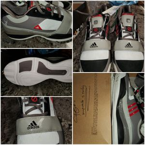 Hard to find BUGS BUNNY ADIDAS SHOES 10/10 brand new in box $150 for Sale in Clovis, CA