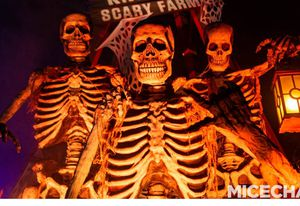 Knotts scary farm for Sale in Norwalk, CA