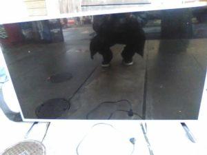 LG 47 inch flat screen for Sale in Tacoma, WA