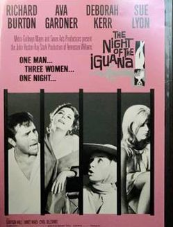 The Night Of The Iguana Movie DVD 2006 for Sale in Chapel Hill,  NC