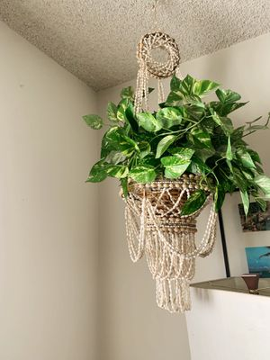 Boho Hanging plant for Sale in Los Angeles, CA