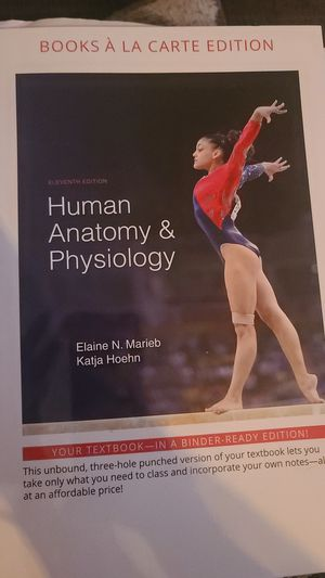 Human Anatomy and Physiology by Elaine N Marieb and Katja Hoehn for Sale in Tampa, FL