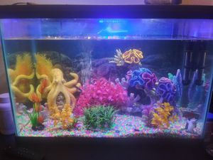 fish tank for Sale in Denver, CO