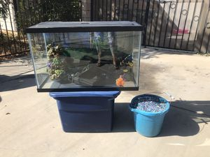 Fish tank for Sale in Palmdale, CA