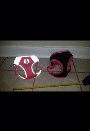 Dog harnesses for Sale in Greenville, SC