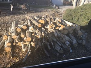 Long aspen logs approx cord not split so I'm asking $80 for Sale in Fountain, CO