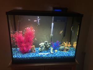 Fish Tank for Sale in Modesto, CA