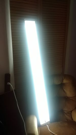 Maxlite lamp and bulbs for Sale in Largo, FL