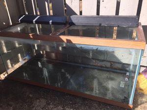 75 gallon fish tank for Sale in Santa Clara, CA