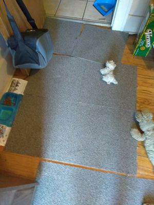 Carpet cleaning service for Sale in Detroit, MI