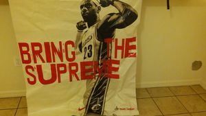 LeBron James throwback plastic curtain for Sale in Frostproof, FL