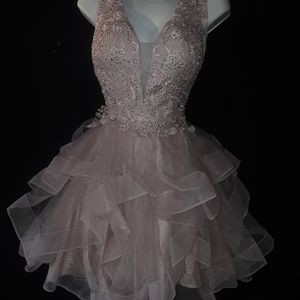 Anny Lee Quinceanera Pictures Party Dress for Sale in Garland, TX