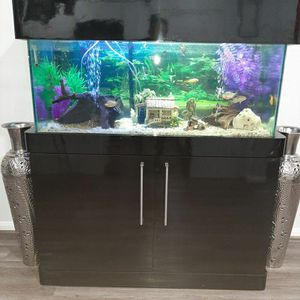 100 Gallon for Sale in Houston, TX