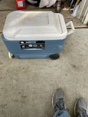 Cooler for Sale in Glendale Heights, IL