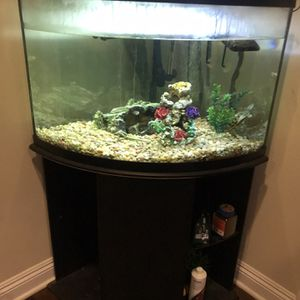 Fish Tank for Sale in Aliso Viejo, CA