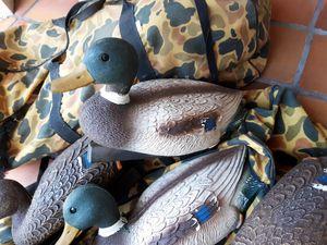 Duck decoys for Sale in Miami, FL