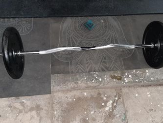 50lbs Total Metal Weight & Curl Bar W/ Spinning Collars [Read Description] for Sale in Phoenix,  AZ