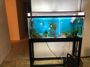 Aquarium complete (55 gallons)included everything high quality brand for Sale in San Diego, CA