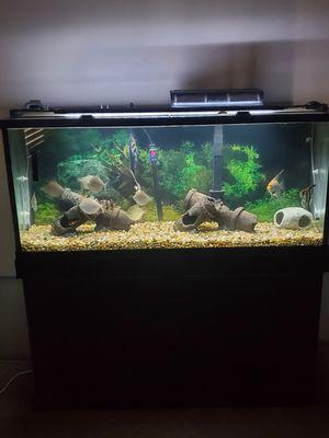 55 gallon fish tank and fish for Sale in Trenton, NJ