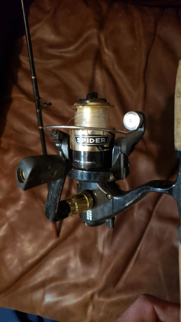 Spider stinger fishing rod and reel