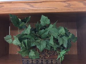 Artificial plant for Sale in Affton, MO