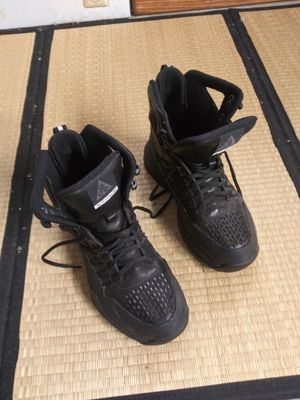 Nike Zoom Superdome Sneaker Shoes Boots ACG ZM for Sale in Kent, WA
