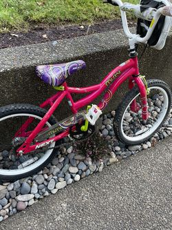 Girls Bike for Sale in Happy Valley,  OR