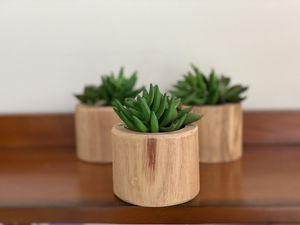 Faux Succulents (3) for Sale in Rockville, MD