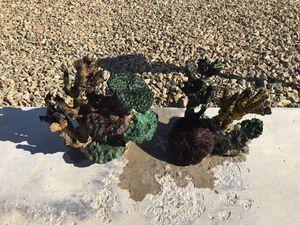 Coral insert decoration for fish tank aquarium, medium size for Sale in Las Vegas, NV