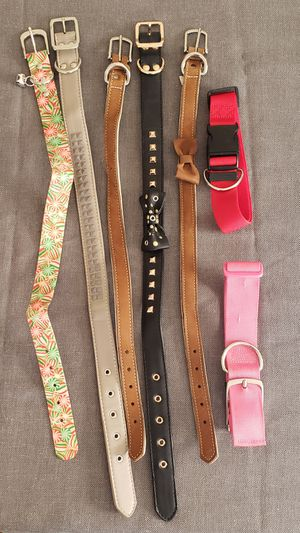 Large dog collar for Sale in Seekonk, MA