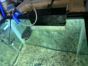 Equipment for Large Aquarium and Filter for Sale in UPPR CHICHSTR, PA
