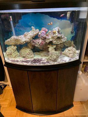 aquarium 36 gallon salt water for Sale in Bristol, CT