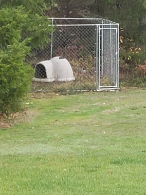 Large dog kennel and house for Sale in Roy, WA