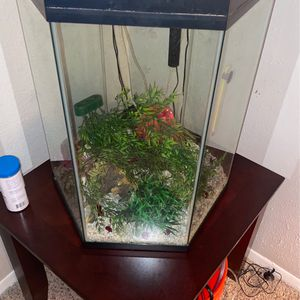 20 Gallon Fish Tank for Sale in Houston, TX