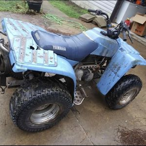 250 Yamaha Timberwolf for Sale in Cleveland, OH