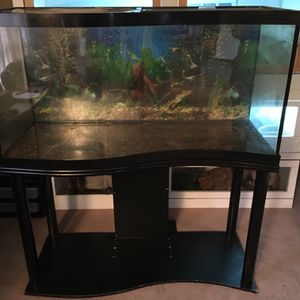 READ AD! 90 gallon Wave Front aquarium Full Setup With Stand READ AD! for Sale in Dover, PA