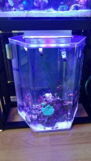 Aquarium octagon for Sale in Elk Grove, CA