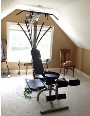 Bow flex Gym plus punching bag for Sale in Glendale Heights, IL