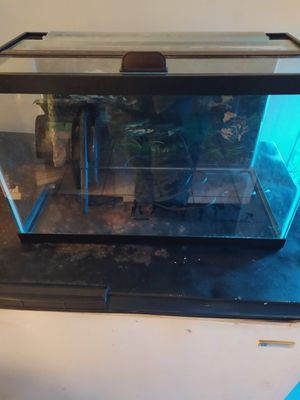 10gallon tank with lid and filter for Sale in Tamarac, FL