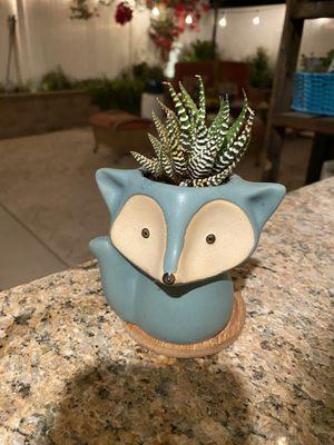 Succulent fox 🦊 pot for Sale in Fontana, CA