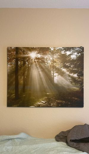 Painting for Sale in Fort Myers, FL