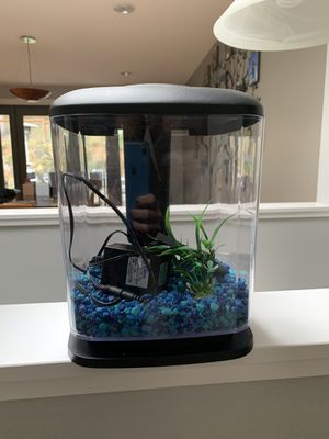 Beta Fish Tank for Sale in Seattle, WA