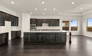 Gorgeous Kitchen Cabinets From New Construction Home for Sale in The Colony, TX