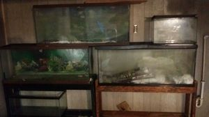 Fish tanks for Sale in Pittsburgh, PA