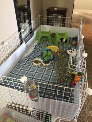 Guinea pig cage for Sale in Scappoose, OR