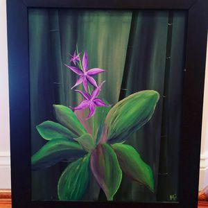 Wild orchids for Sale in Alexandria, VA