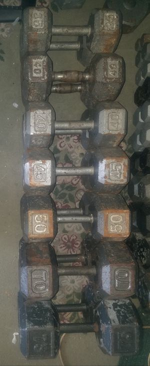 Dumbbell weights for Sale in Orland Park, IL