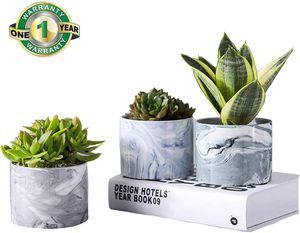 Plants Pots,4.5 3.1 Inch 3 Packs Marble Flower Pots for Live Plants,Succulent Plants Pots for Air Plant,Ceramic Planter Pots with Drain Hole for Sale in Syosset, NY